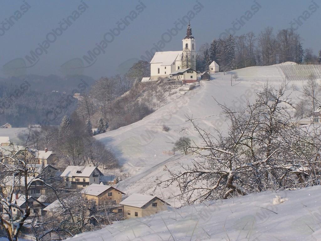 Ocenjevanje škode, ki sta jo povzročila pozeba in zapadli sneg