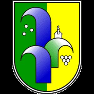 9. Redna seja občinskega sveta Občine Radenci