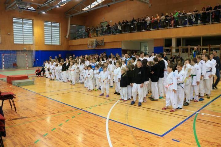 16. Pokal Ippon Sevnica v ju-jitsu