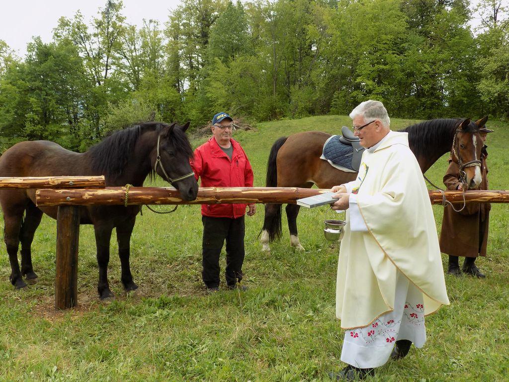 Blagoslov konj