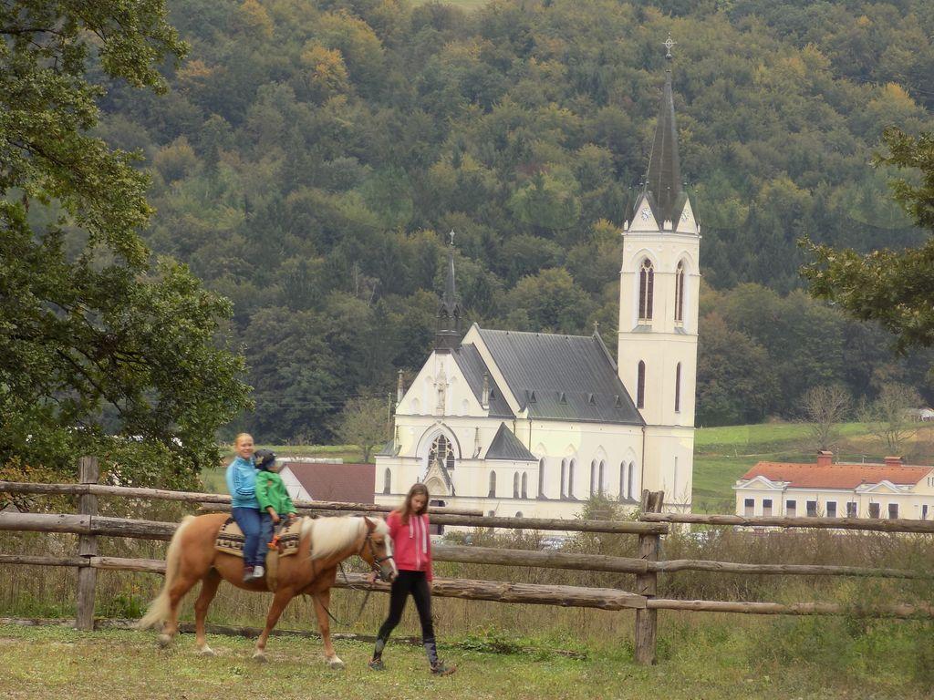 Hipoterapija na konju za hudo bolne