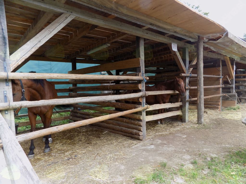 Zunanji boksi za konje na posestvu v Češči vasi