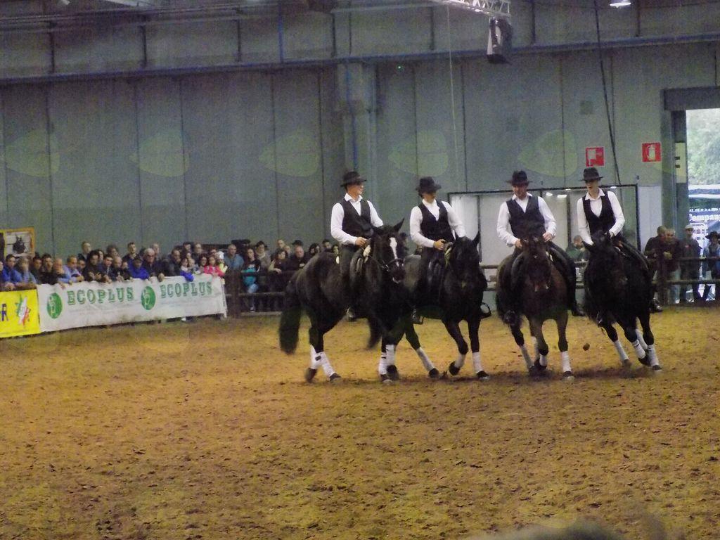 Jezdenje  in prikaz plesa s konji