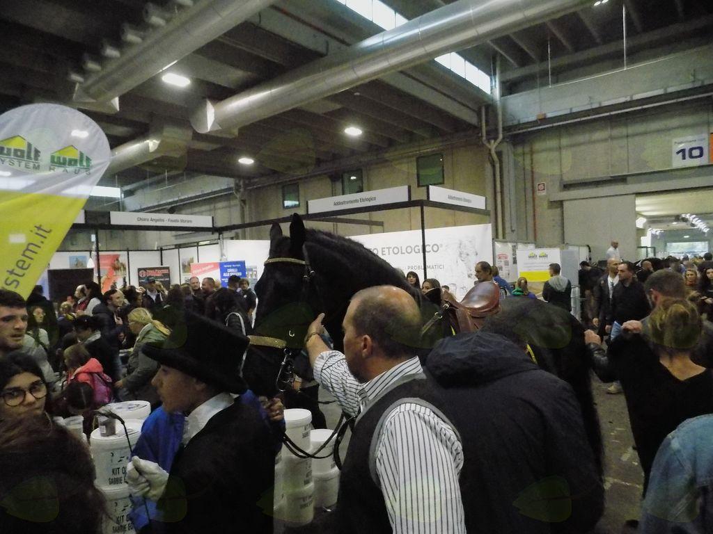 Med obiskovalci so bili konjeniki s konji