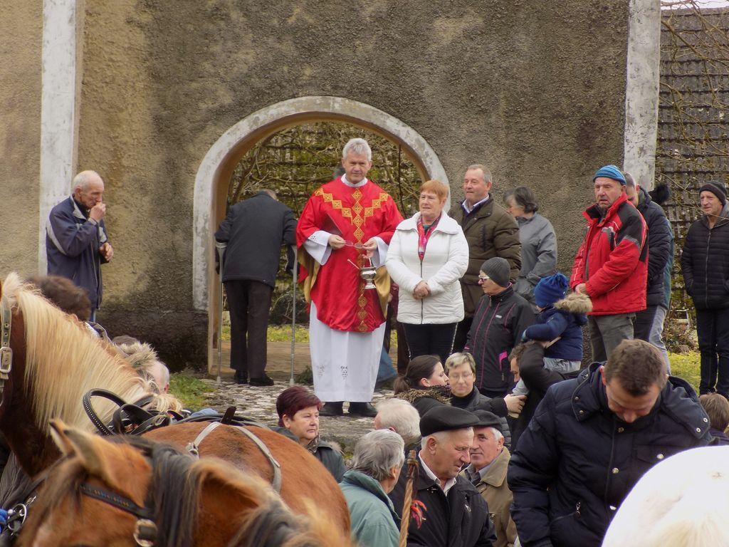 Blagoslov konj v Vranju