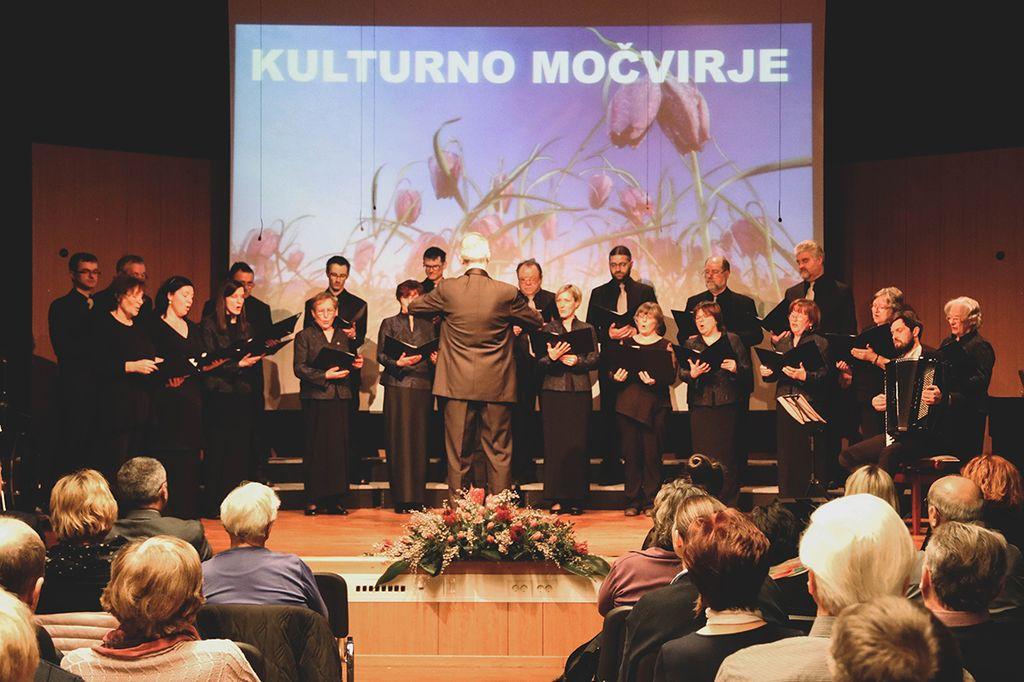 Društva ponovno združena na Kulturnem močvirju
