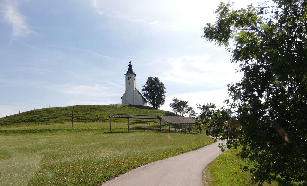 Lipa ob cerkvi Sv. Andreja na Planini nad Horjulom