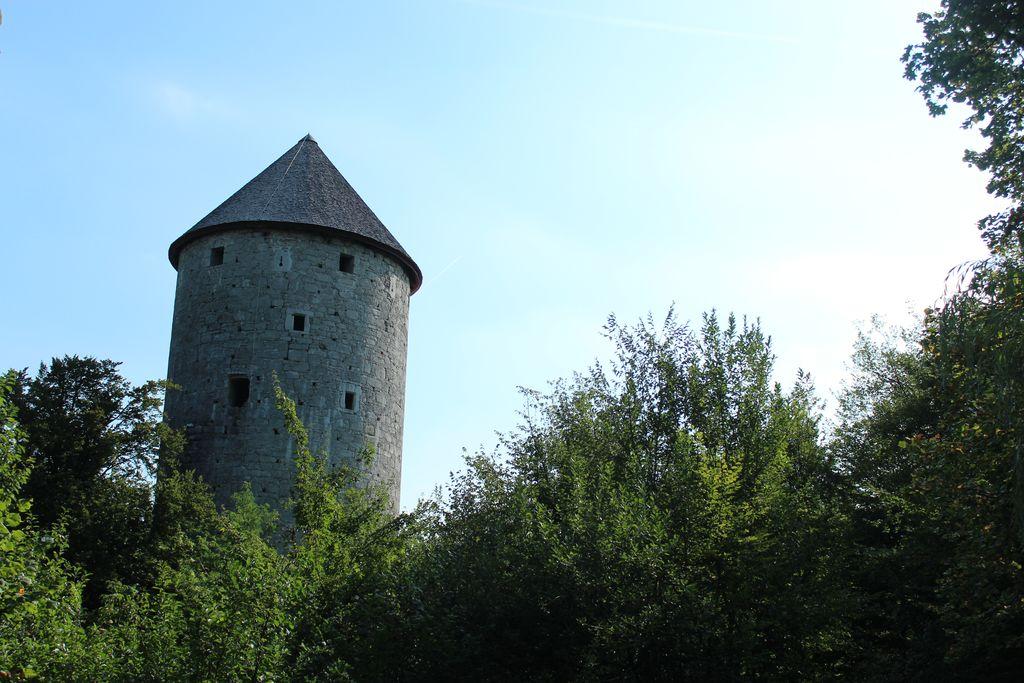 Z evropsko pomočjo vse bliže obnovi Ravbarjevega stolpa