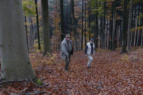 Podelitev priznanj najbolj skrbnim lastnikom gozdov v letu 2016