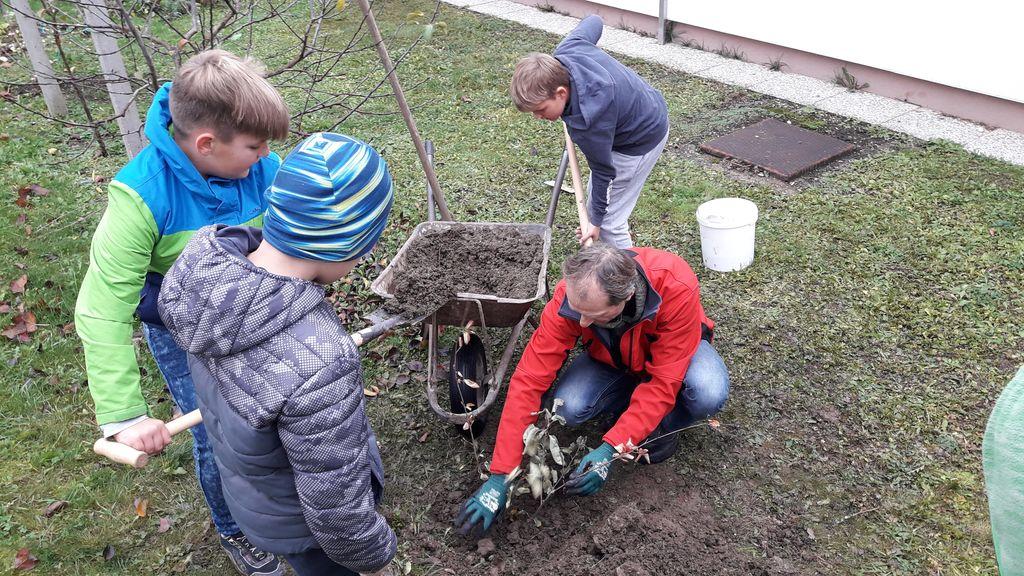 Šola in vrtec v Podgorju posadili šmarno hrušico
