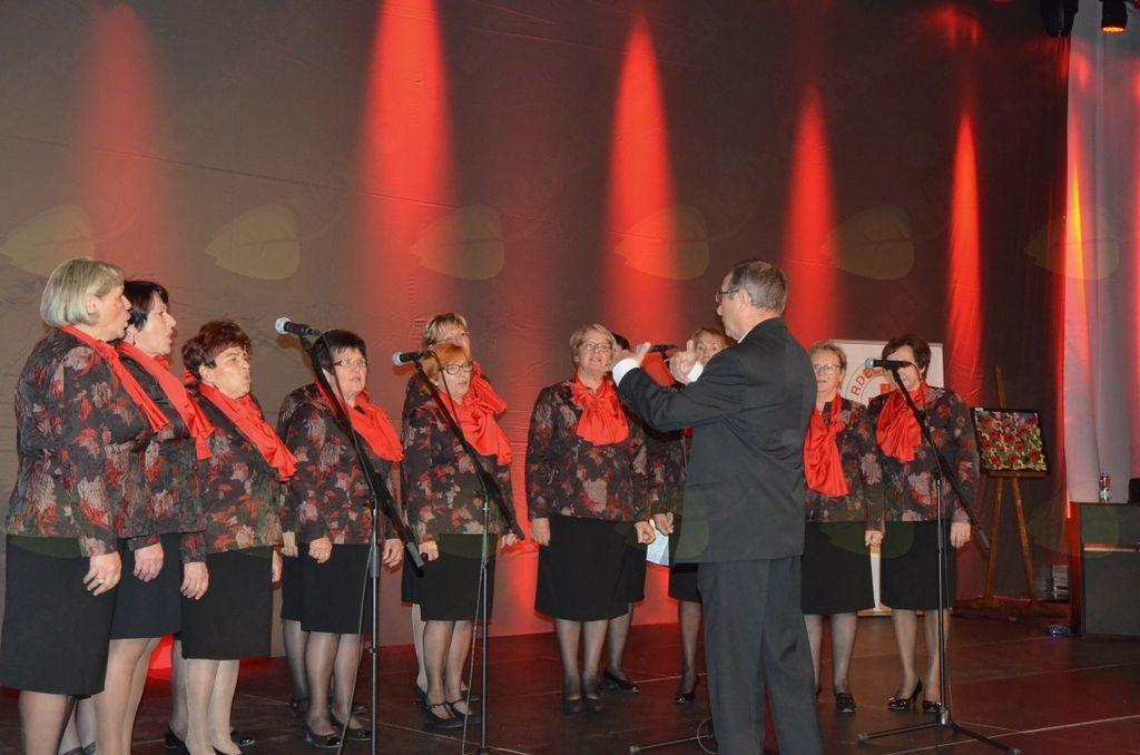 Dobrodelni koncert Občani Sevnice, stopimo skupaj!