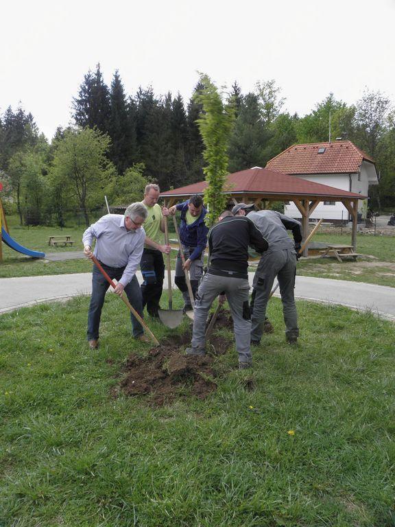 KIG Vrtcu Ig podaril drevesi