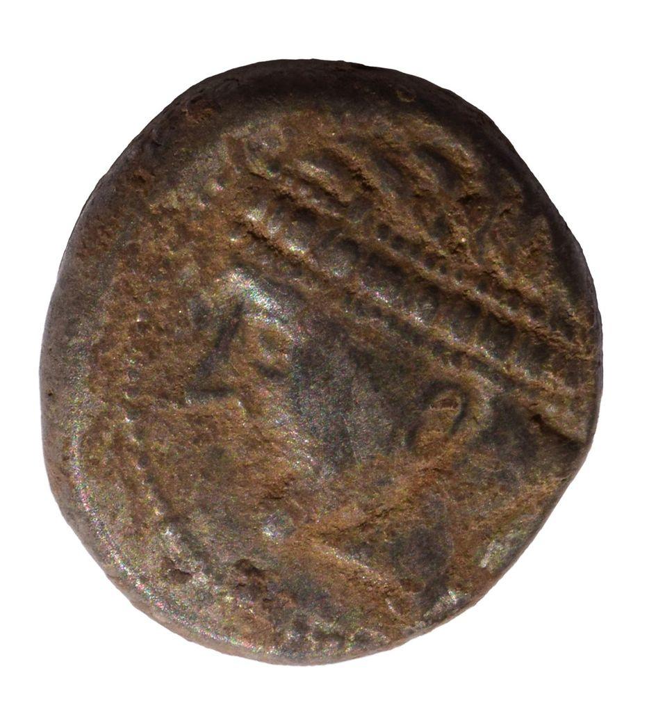 Arheološke raziskave na Pungrtu na Igu