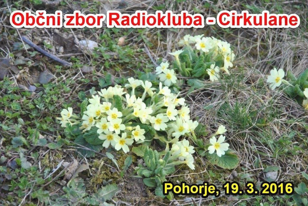 Radioklub Cirkulane prejel pokal za osvojeno 3. mesto v S5 Maratonu