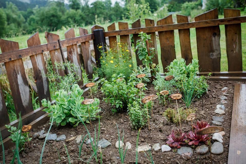 Vrt ob Erčevi žagi