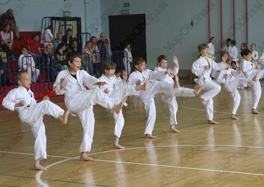 Sankukai karate klub Komenda