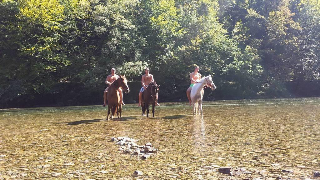 Dvodnevna ježa mirnopeške konjenice na Kolpo