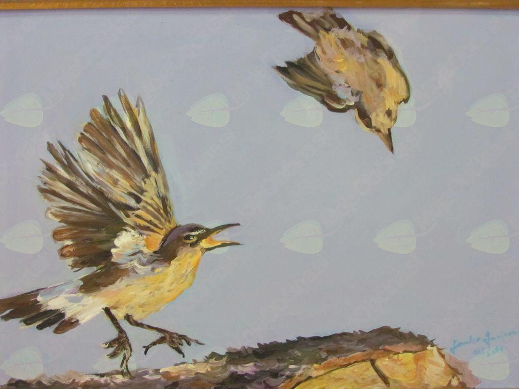 """""""Ptice sveta"""" - razstava slikarja Janka Gašperina"""