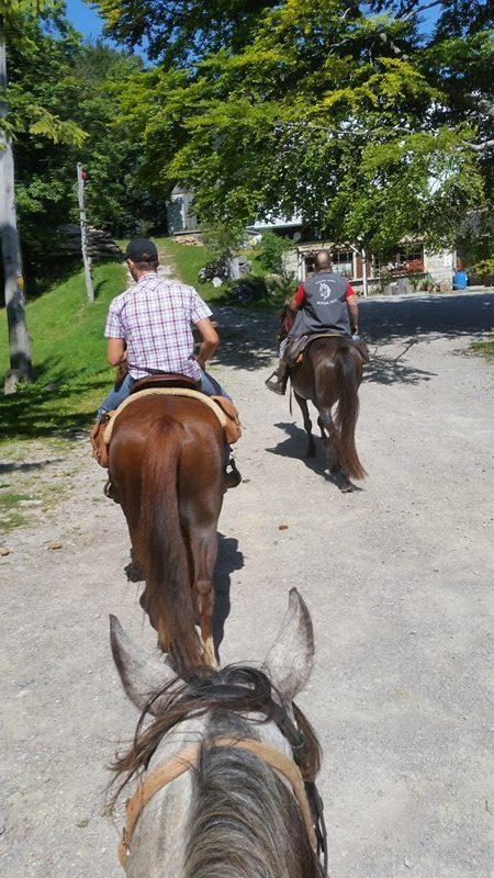 Mirnopeški konjeniki na Mirni Gori