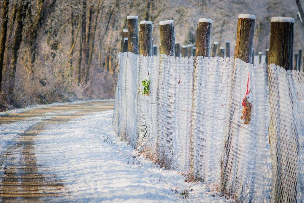 Adventna steza (foto: Bojan Dremelj)