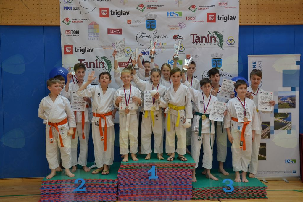 Sevniški karateisti