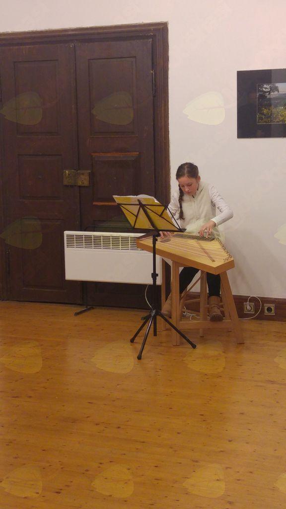 Na citrah je zaigrala Nuša Štih (foto: Jure Tratar)