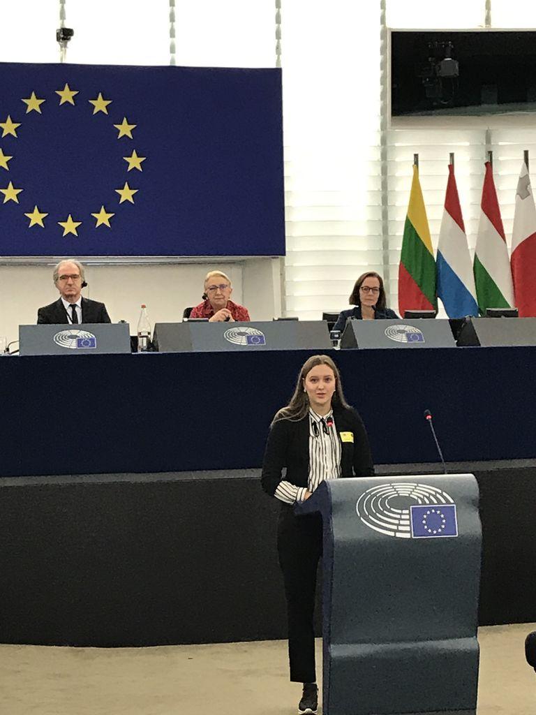 V evropskem parlamentu