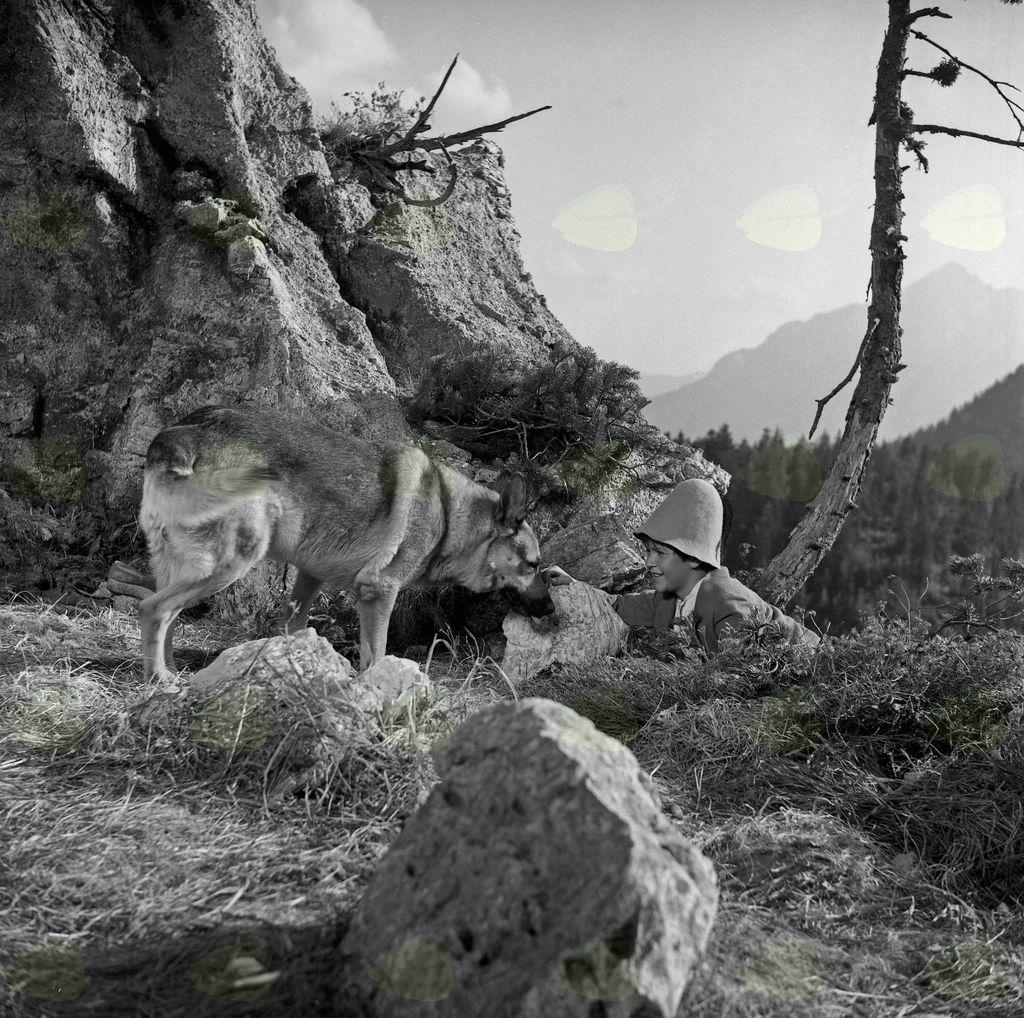 Fotografija filma. Velimir Gjurin v filmu Srečno, Kekec! (Jože Gale, 1963). Foto: Božo Štajer, hrani: MNZS.