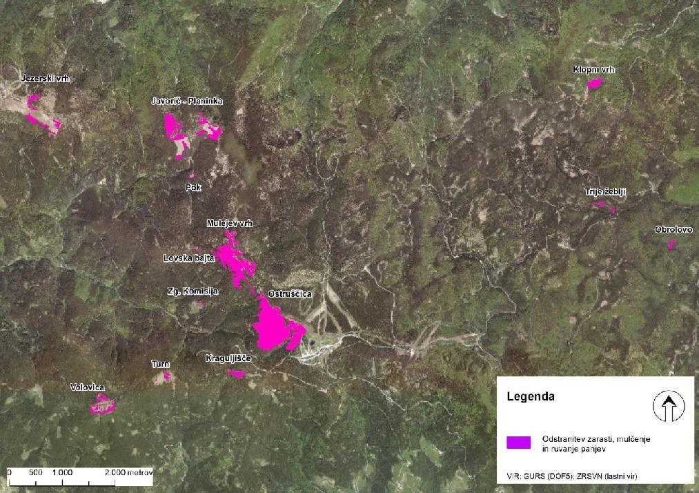 Odstranjevanje drevesne zarasti na Pohorju