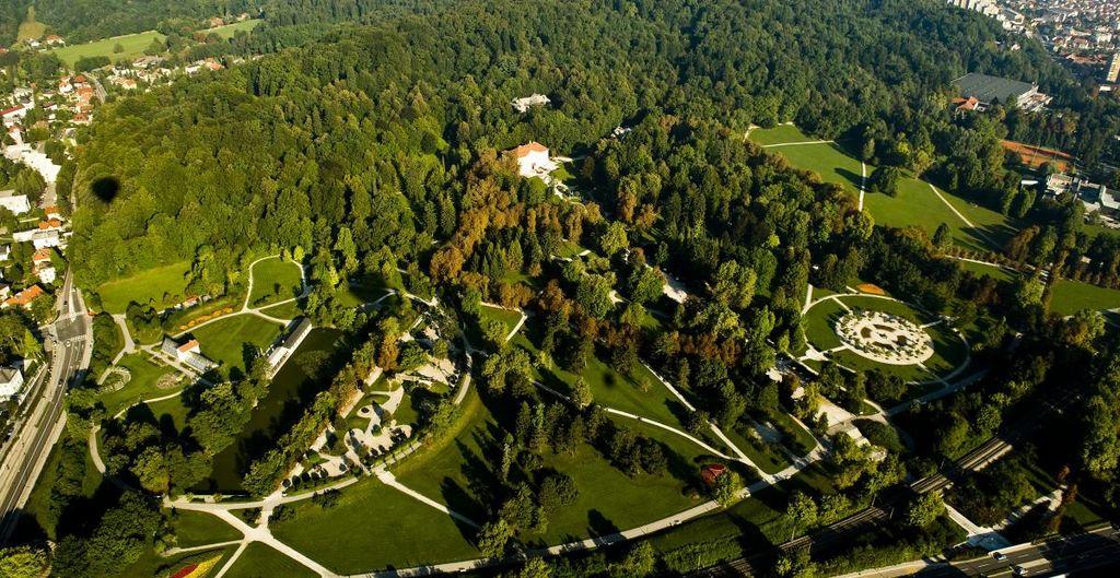 V KP Tivoli, Rožnik in Šišenski hrib smo začeli z nego gozda