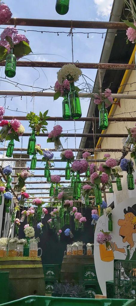 Čudovite kreacije Hortikulturnega društva Laško