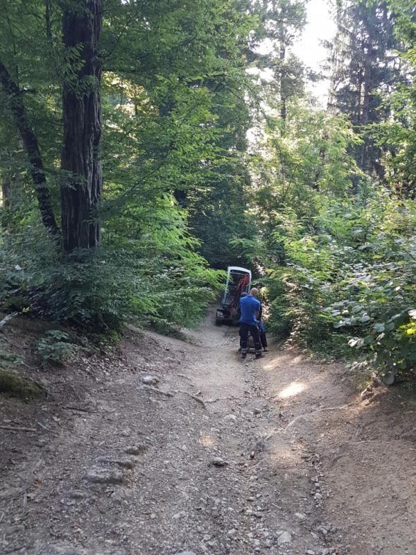 Urejamo za vas: pot ob Gozdarskem inštitutu na Rožnik