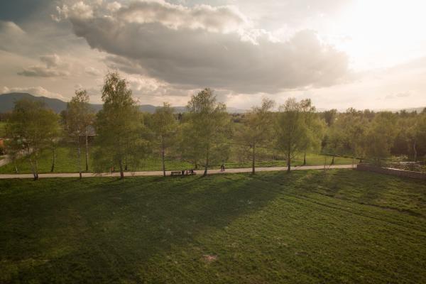 Pot spominov in tovarištva z več kot 7.000 drevesi pripomore k hlajenju ozračja Foto: STA