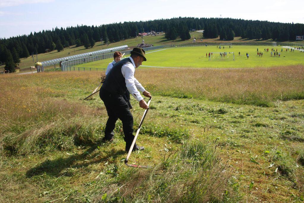 Košnja pohorskih planj na star način
