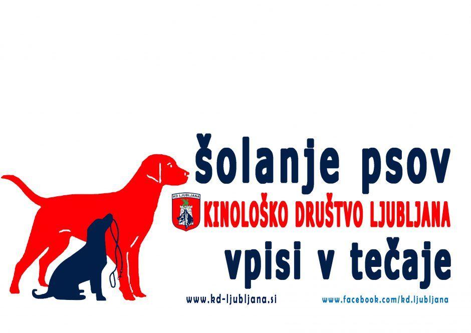 Šolanje psov