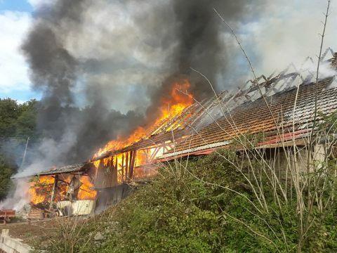 Akcija po požaru za družino Grivec