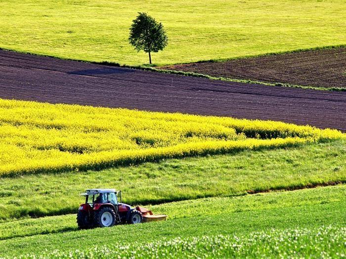 Prodaja 4 kmetijskih zemljišč