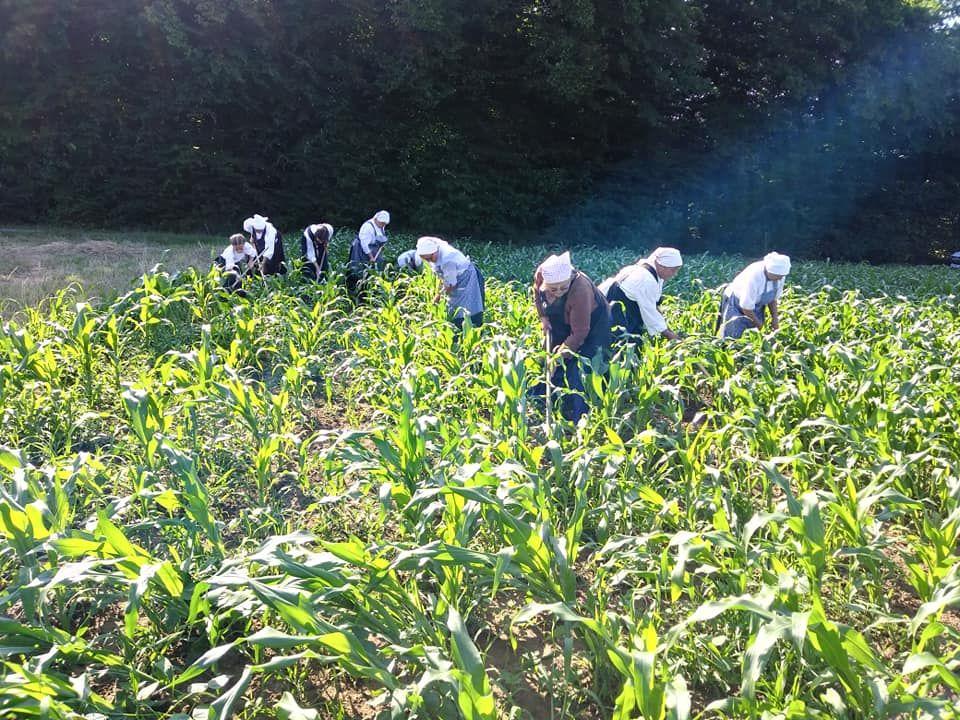 Društvo kmetic Destrnik v sodelovanju z LAS