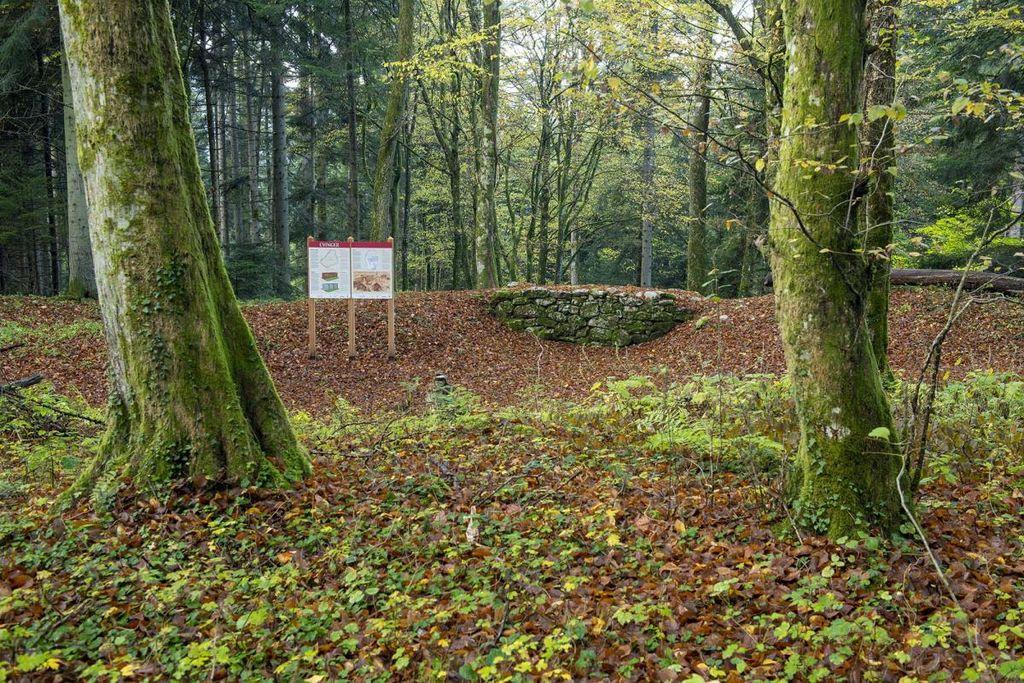 Prenovljena arheološka pot Cvinger