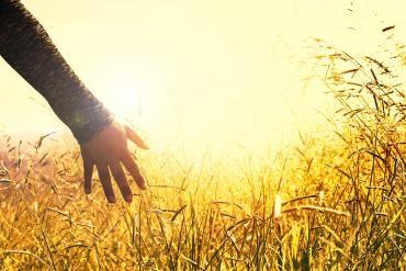 Uvodne informacije o pomočeh in ozdravitvah po duhovni poti