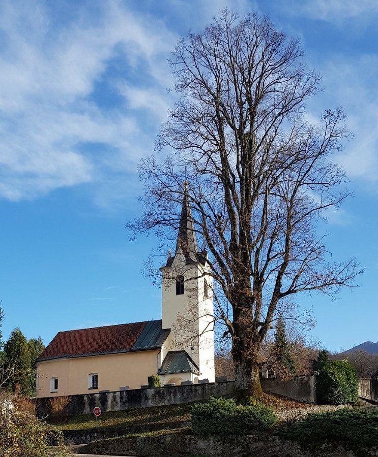 Cerkev sv. Janeza Krstnika grajena pred letom 1500, s starodavno lipo, v ozadju se vidi Trdinov vrh.