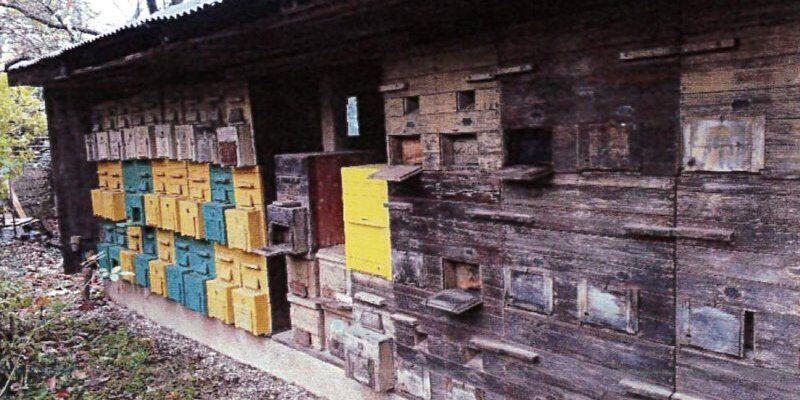Izbor najstarejših, izvirnih in posebnih čebelnjakov