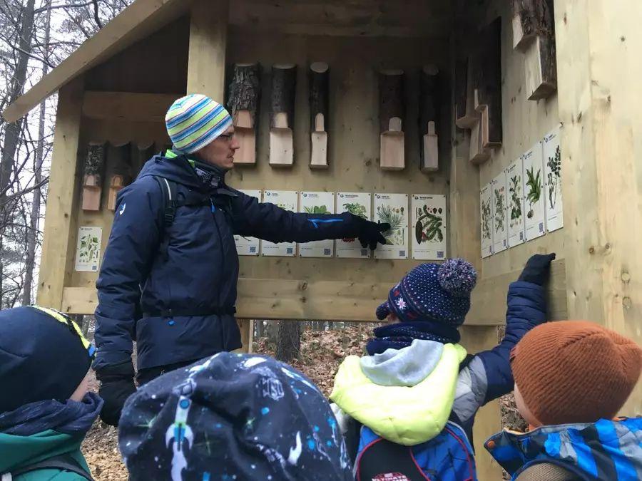 URBforDAN: gozdne vsebine za otroke