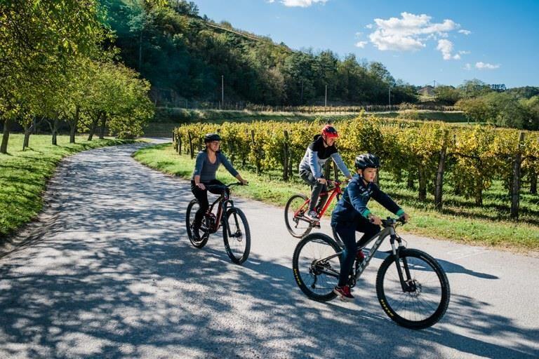 Spodbujamo trajnostno mobilnost: Turnišče - Dobrovnik - Lendava