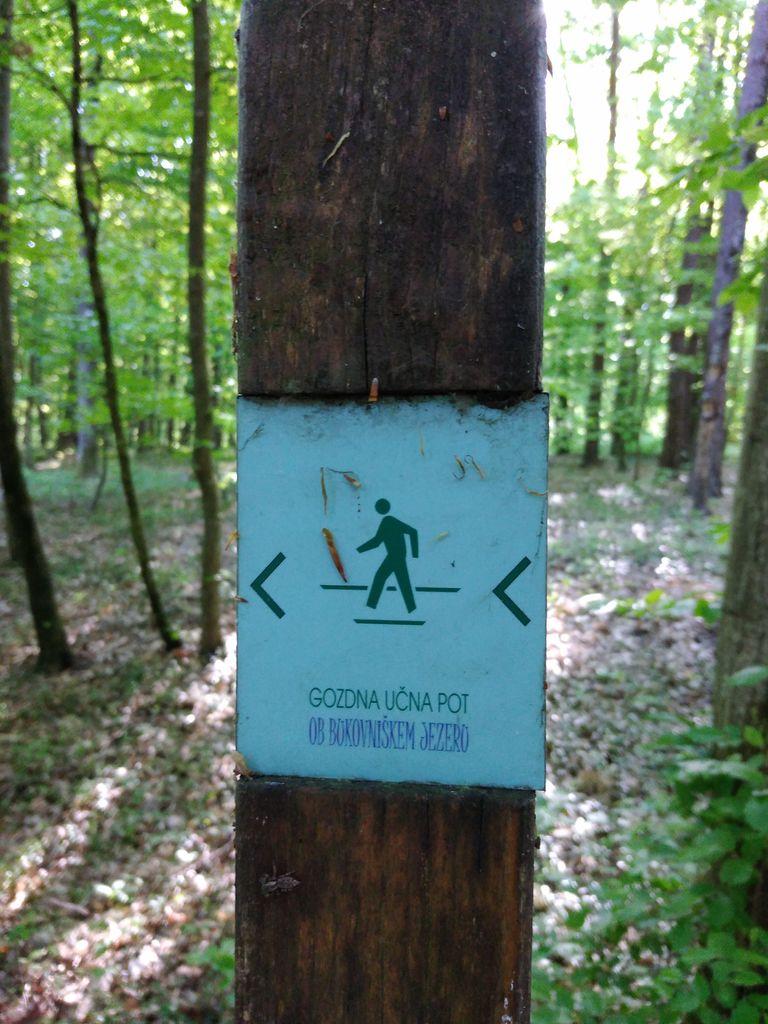 Gozdna učna pot čaka na vas