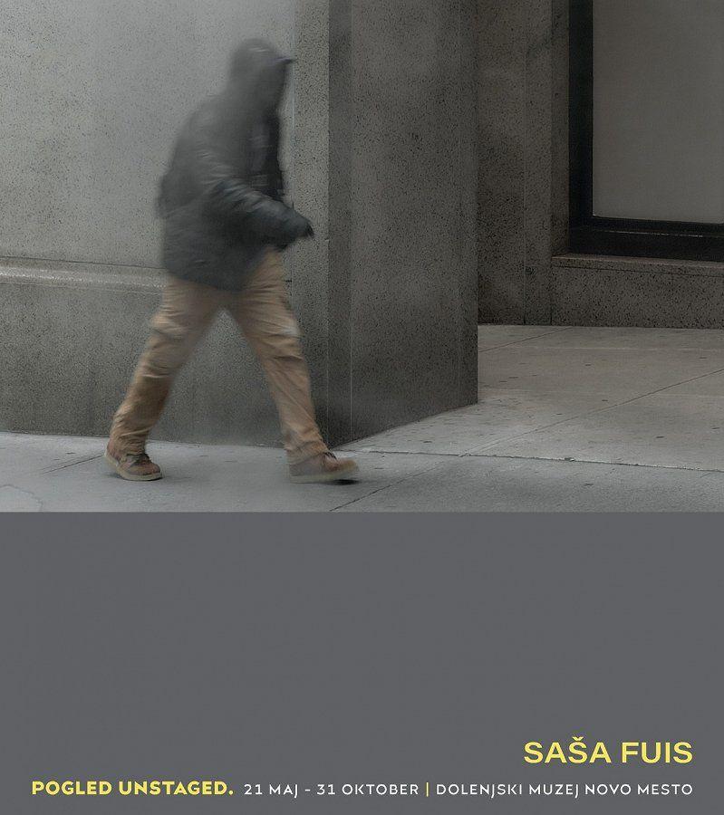 Dolenjski muzej vabi na ogled razstave Saša Fuisa in pogovorni večer o ustvarjanju