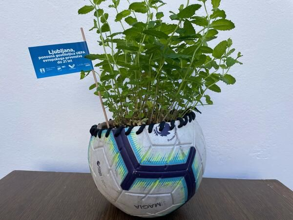 Nogometna žoga je lahko tudi cvetlični lonček