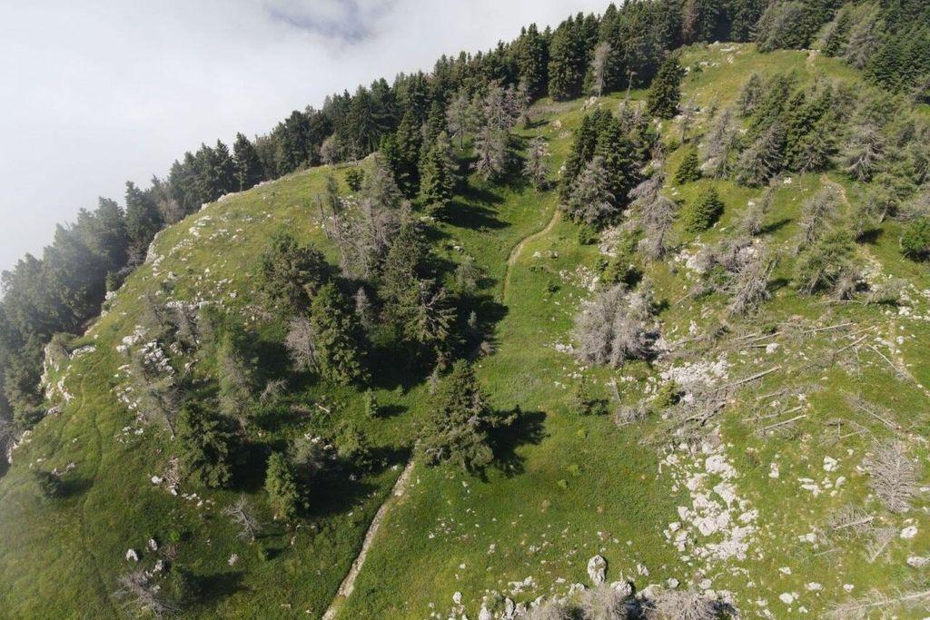 Začeli smo izvajati naravovarstvena dela na Peci in Uršlji gori