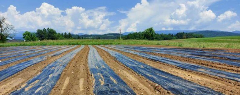Trajnostna uporaba plastike v kmetijstvu