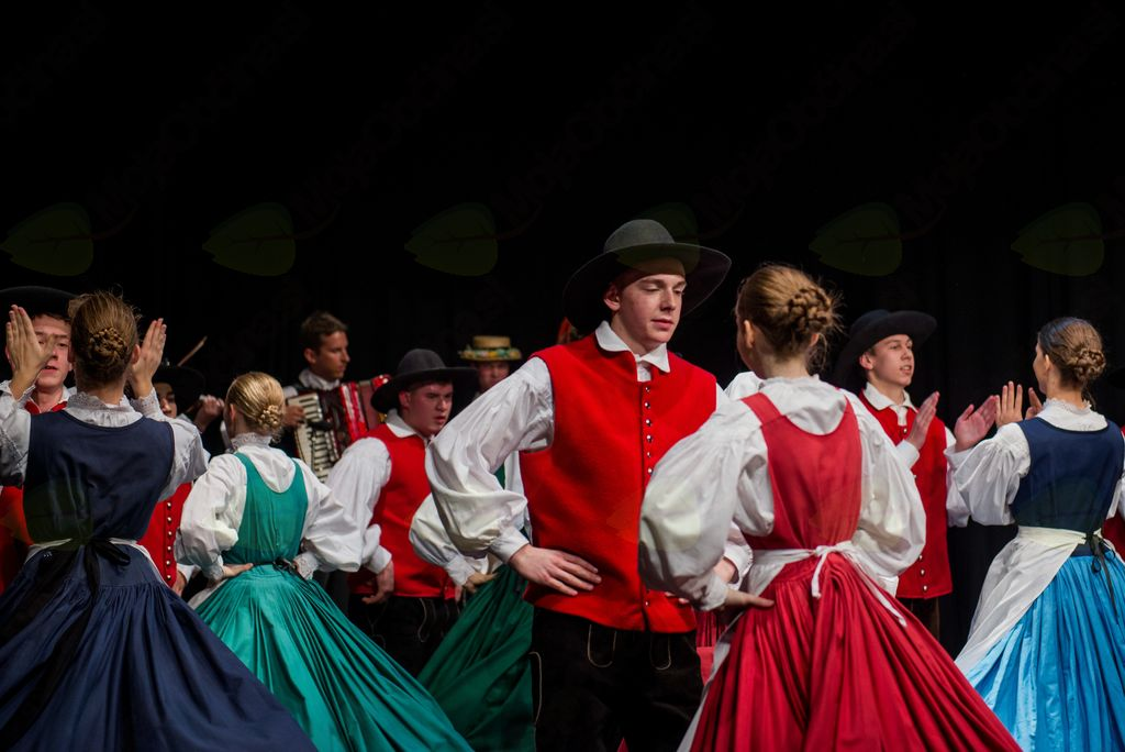 Dolenjski plesi (fotografija: Rok Vidmar)
